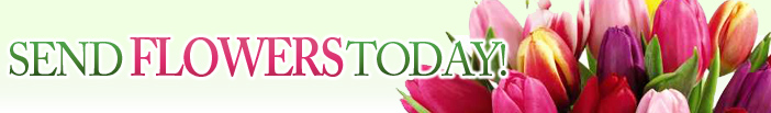 floristwashington.com